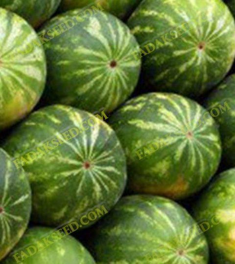هندوانه (2)